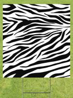 Zebra Stripes Image