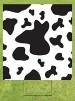 Cow Spots Image